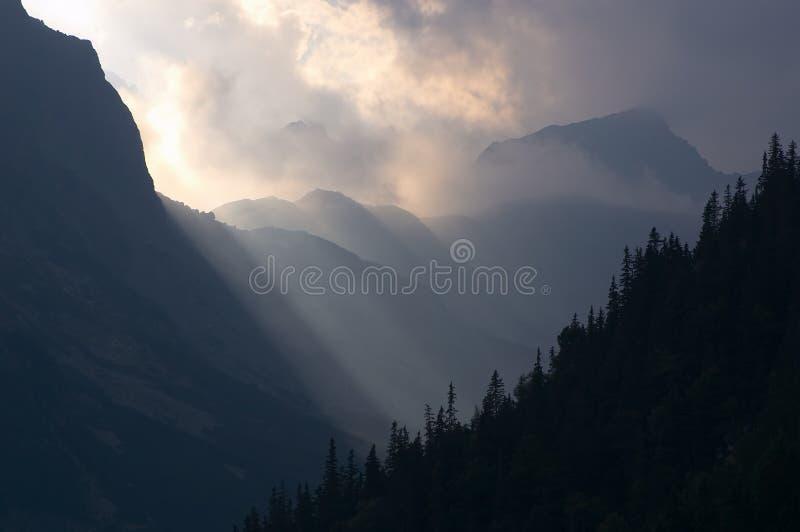 Zonne stralen en mist stock afbeelding