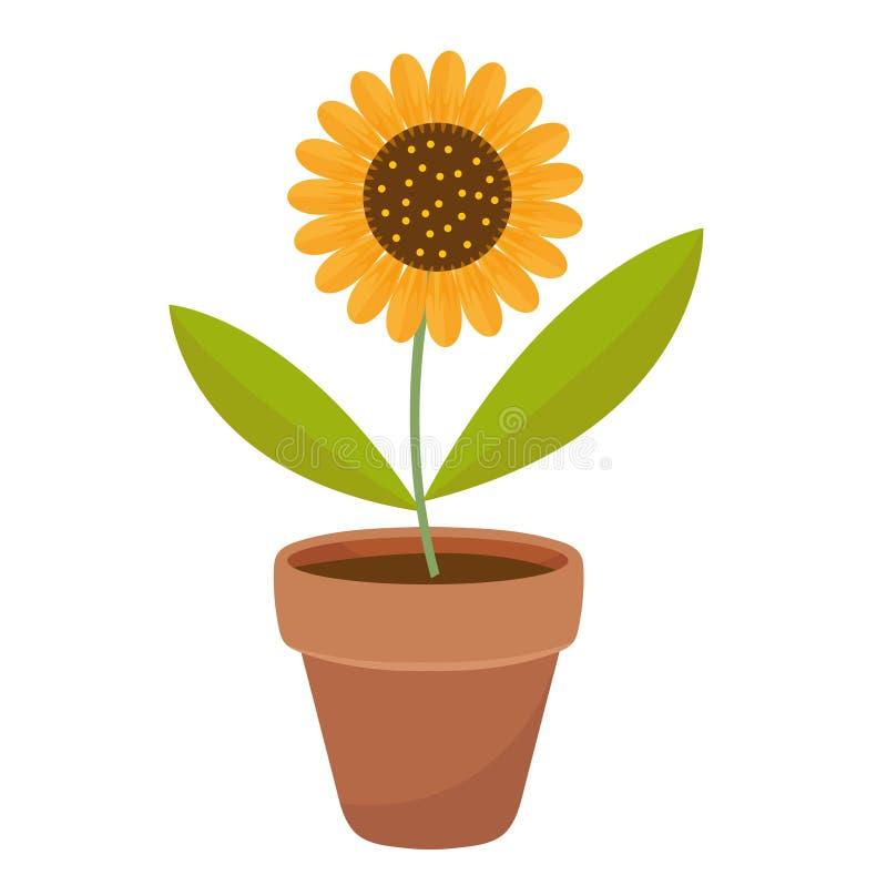 Zonnebloem in een bloempot vlak pictogram, beeldverhaalstijl Geïsoleerdj op witte achtergrond Vectorillustratie, klem-kunst royalty-vrije illustratie