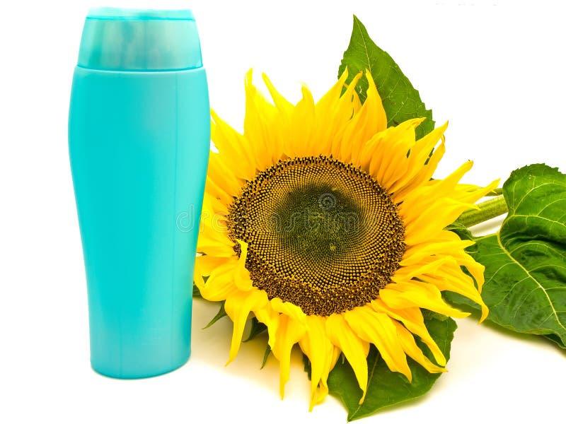 Zonnebloem en fles stock afbeelding