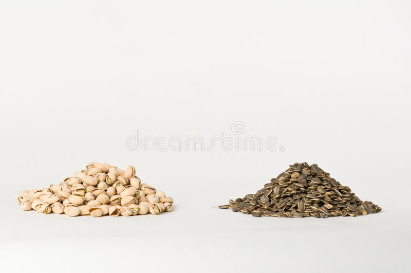 Zonnebloem en Pistaches stock afbeelding
