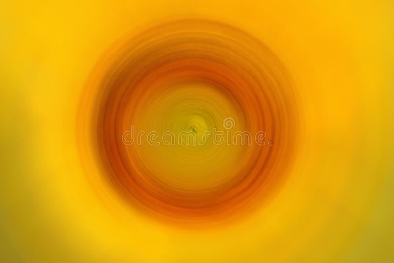 Zonnebloembloemblaadjes op achtergrond van de onduidelijk beeld de radiale motie Abstracte de illustratieachtergrond van de flora stock fotografie