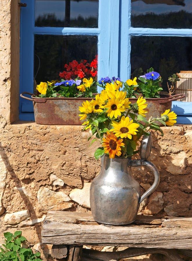 Zonnebloemen in de Provence royalty-vrije stock foto's