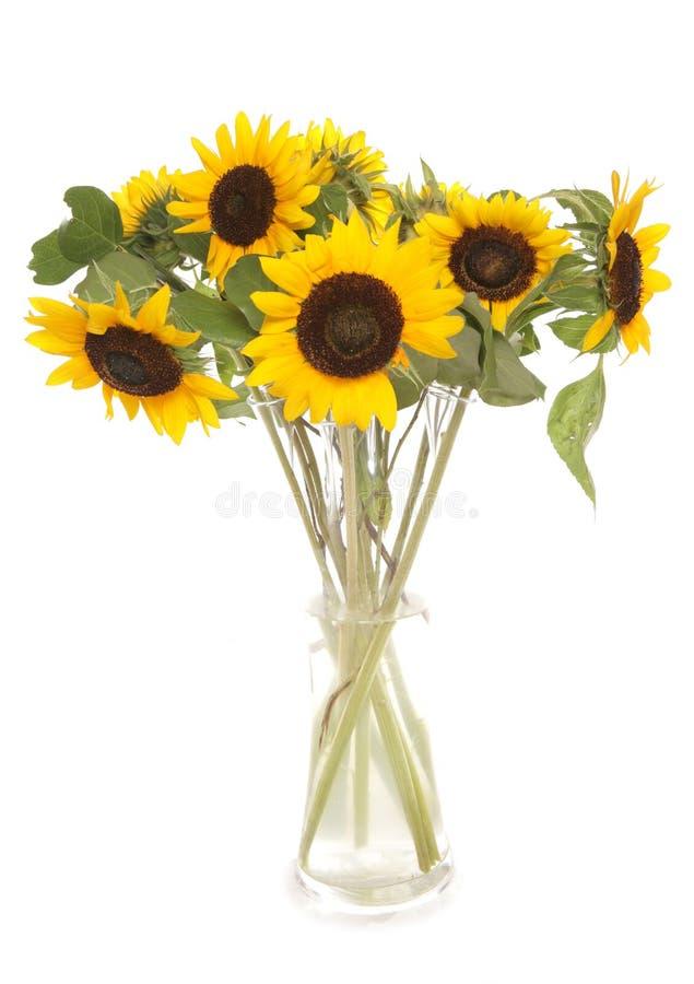 Zonnebloemen in een vaas stock foto