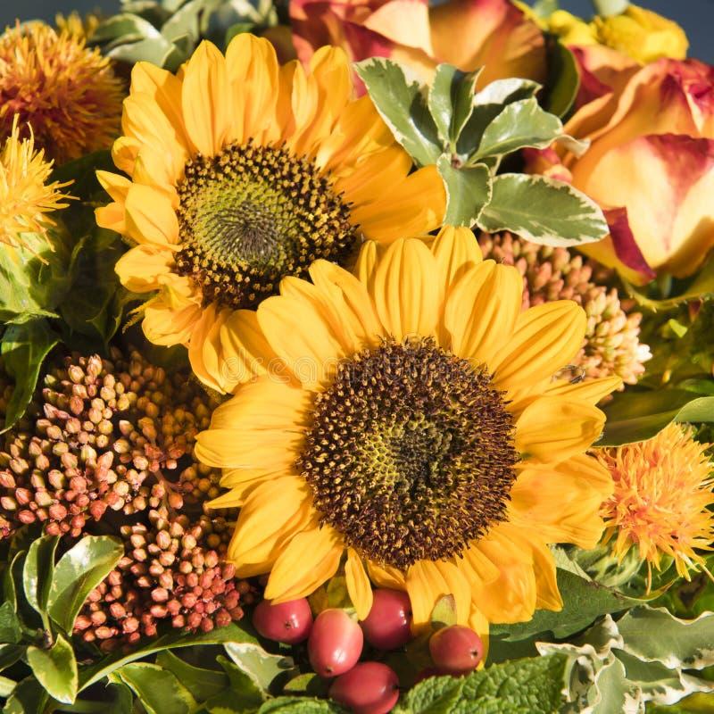 Zonnebloemen en dalingsbloemen stock afbeeldingen