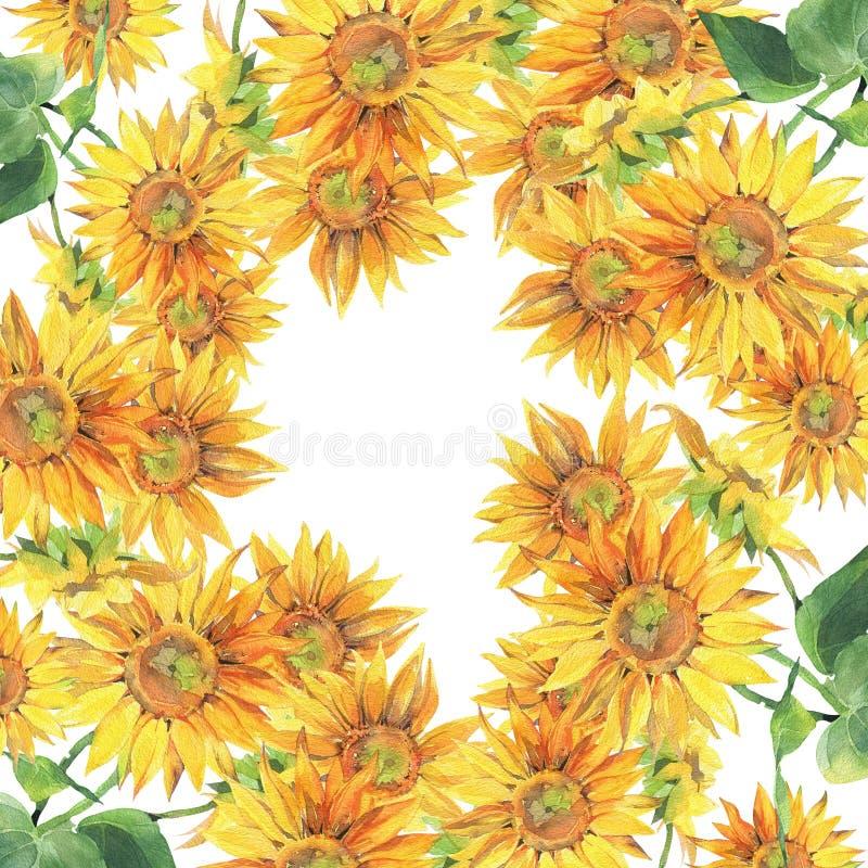 Zonnebloemen Hand geschilderde waterverfillustratie Achtergrond stock illustratie