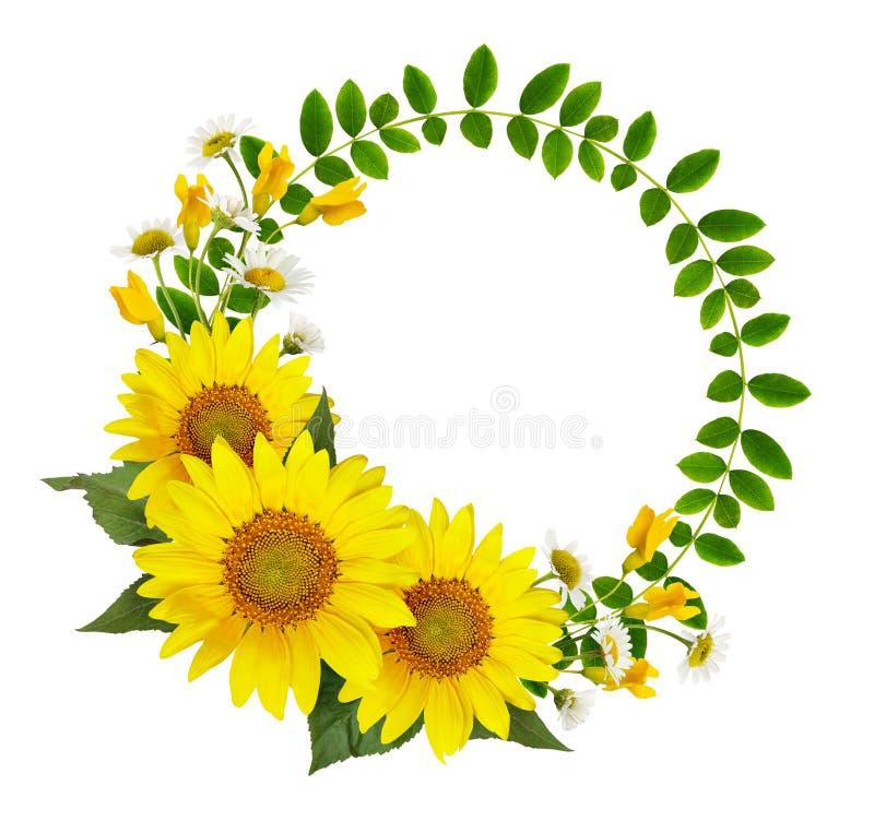 Zonnebloemen, madeliefjes en acaciabloemen en groene bladeren in een rou stock afbeelding