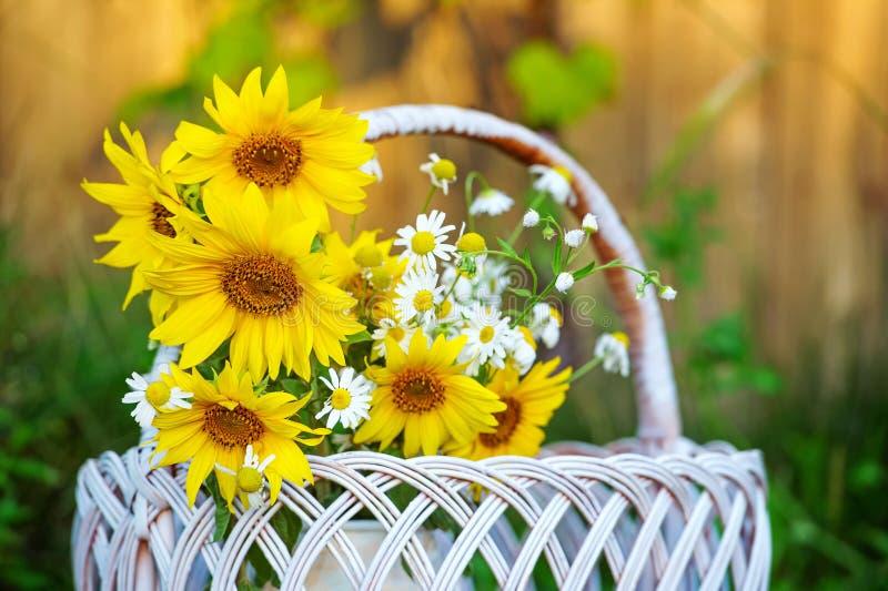 Zonnebloemen in mand stock foto