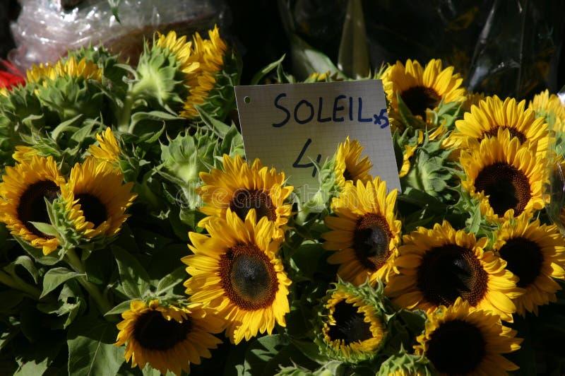 Zonnebloemen in markt stock afbeeldingen