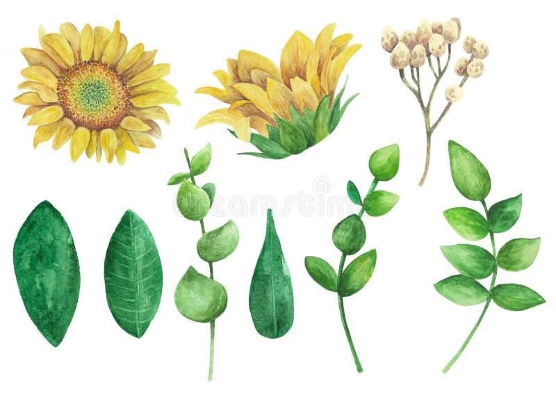 Zonnebloemenvector clipart Rustieke de kunstwaterverf van de bloemenklem vector illustratie