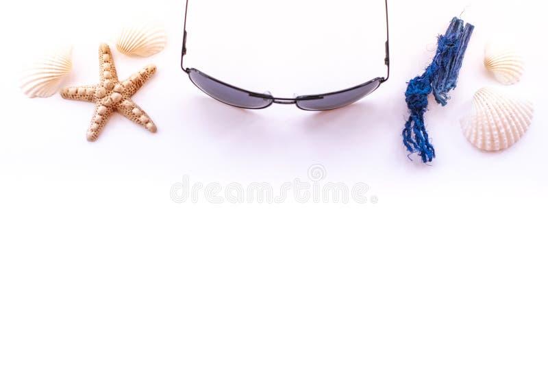 Zonnebril, zeeschelpen en zeester op roze achtergrond, hoogste mening Het tropische concept van de de zomervakantie stock foto