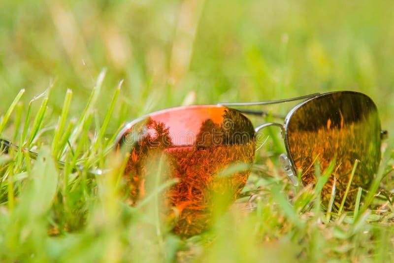 Zonnebrilclose-up op een groen gazon stock foto