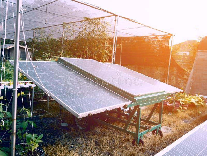 Zonnecellen voor landbouw Installatie en het concept van de Machtselektriciteit Zaken en industrieel concept stock afbeeldingen