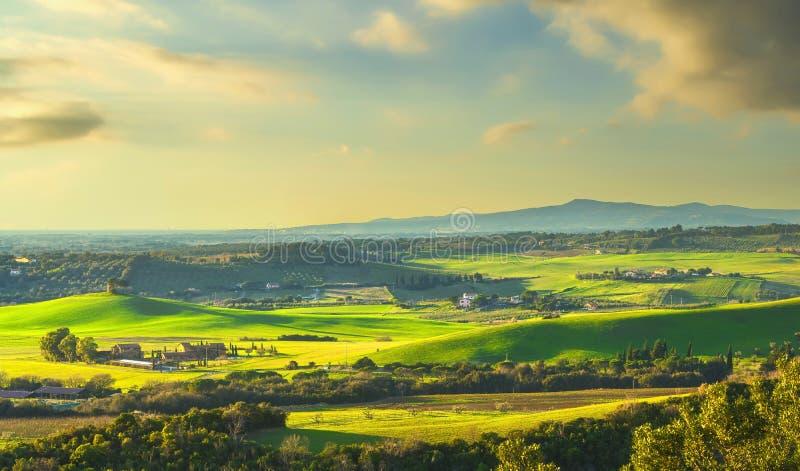 Zonnelandschap in Maremma Rillingen en cypersbomen Bibbona, Toscane, Italië stock fotografie