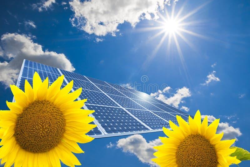 Zonnepaneel en zonnebloemen royalty-vrije stock foto's