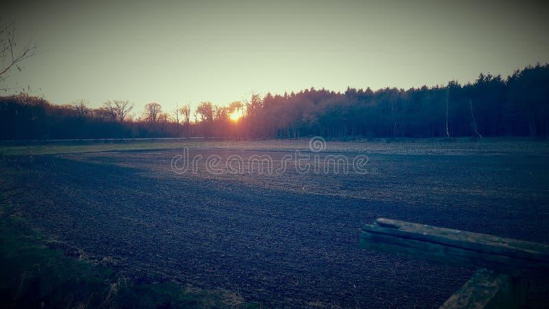 zonneschijn royalty-vrije stock foto's