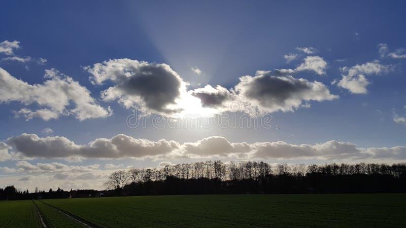 zonneschijn stock afbeelding