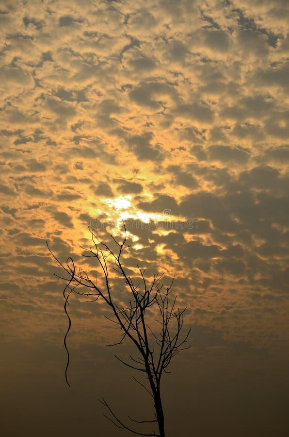 Zonneschijn met wolk stock afbeelding