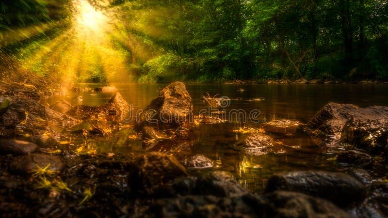 Zonneschijn op een stroom royalty-vrije stock afbeelding