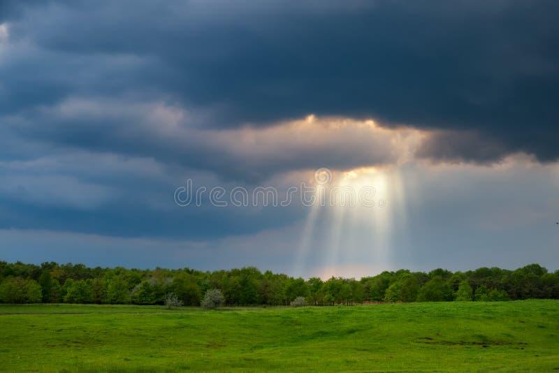 Zonnestralen over het stormachtige gebied royalty-vrije stock foto's