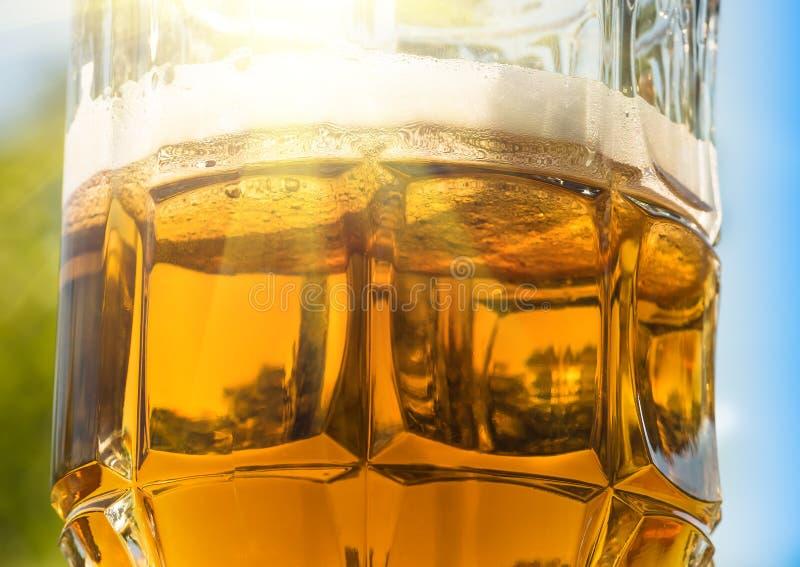 Zonnig bier in een glas royalty-vrije stock foto's