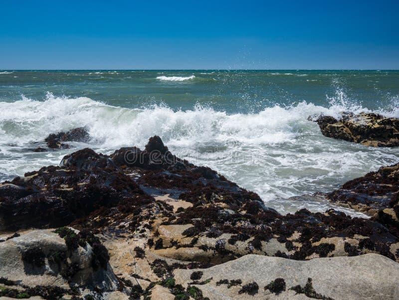 Zonnig strand op een de zomerdag in Portugal met gouden zand, rotsen en de Atlantische Oceaan stock foto's