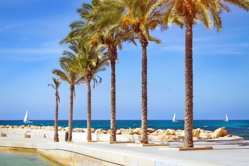 Zonnig strand in Torrevieja royalty-vrije stock afbeeldingen