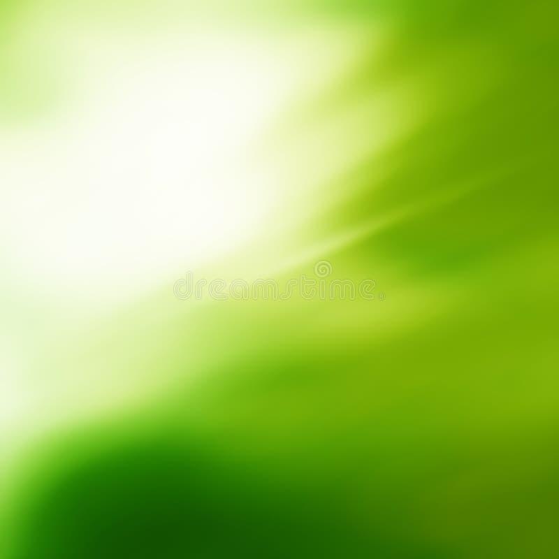 Zonnige abstracte groene aardachtergrond Verse aard vector illustratie