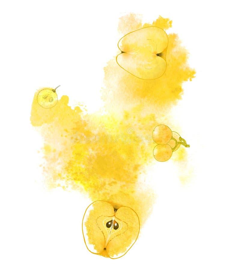 Zonnige appelen en druiven en gele plons op witte achtergrond Met de hand geschilderde abstracte illustratie stock illustratie
