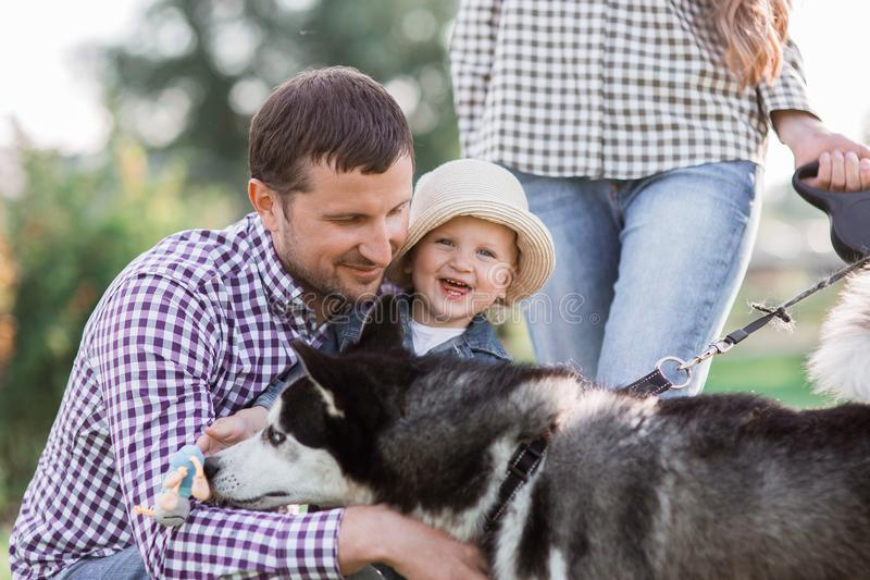 zonnige beelden van een gelukkig echtpaar met een hond en een kind royalty-vrije stock foto's