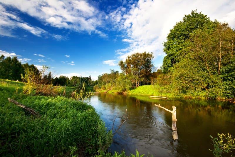 Zonnige dag dichtbij de rivier stock afbeelding