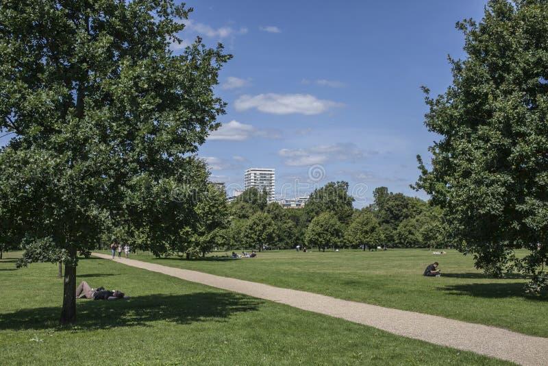 Zonnige dag in Hyde Park en een weg stock afbeeldingen
