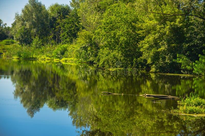 Zonnige dag op een kalme rivier in de zomer royalty-vrije stock foto