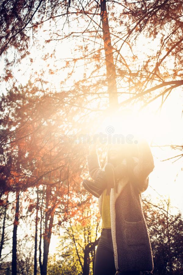 Zonnige de herfstdag royalty-vrije stock fotografie