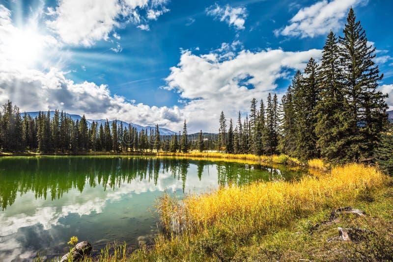 Zonnige de herfstdag in Jasper National Park stock afbeelding