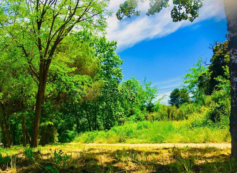 Zonnige de lentedag in Cerdanyola del Valles stock foto