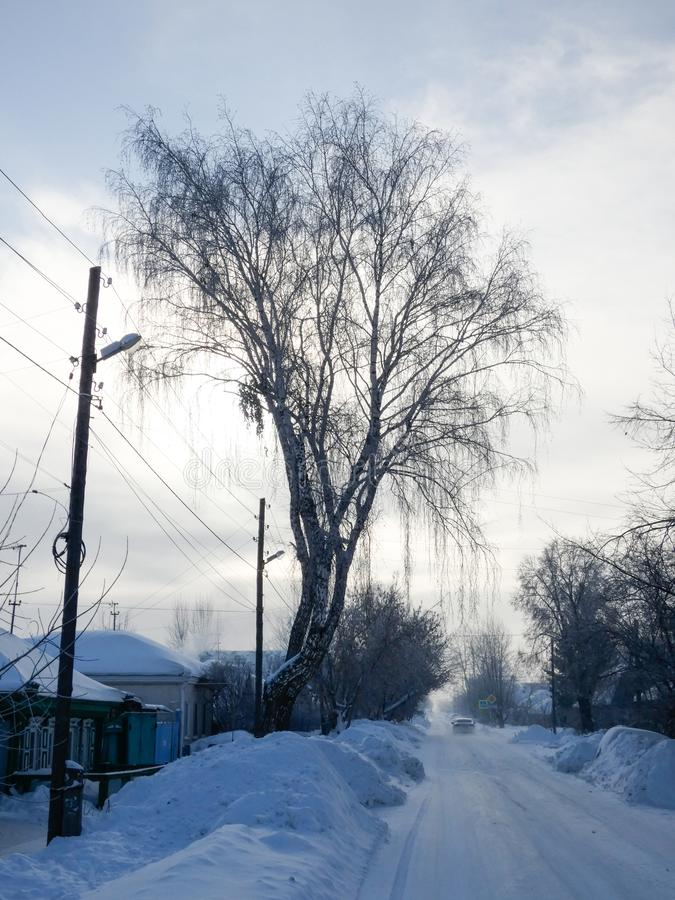 Zonnige de winterdag in Siberië Smalle straat die naar horizon, partij rond gaan van sneeuw Het landschap van het land, kleine bl stock afbeeldingen