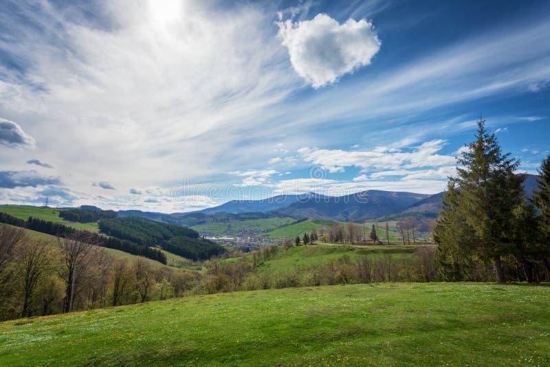 Zonnige de zomerdag in Karpatisch mountaingslandschap, de Oekraïne stock afbeelding