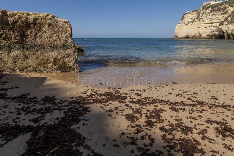 Zonnige het strand van de zandtoerist stock afbeeldingen