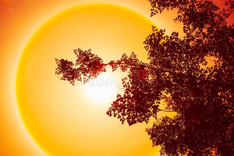 Zonnige hete dag, het fenomeen van de zonhalo, het effect van de zonhalo, zonring stock foto