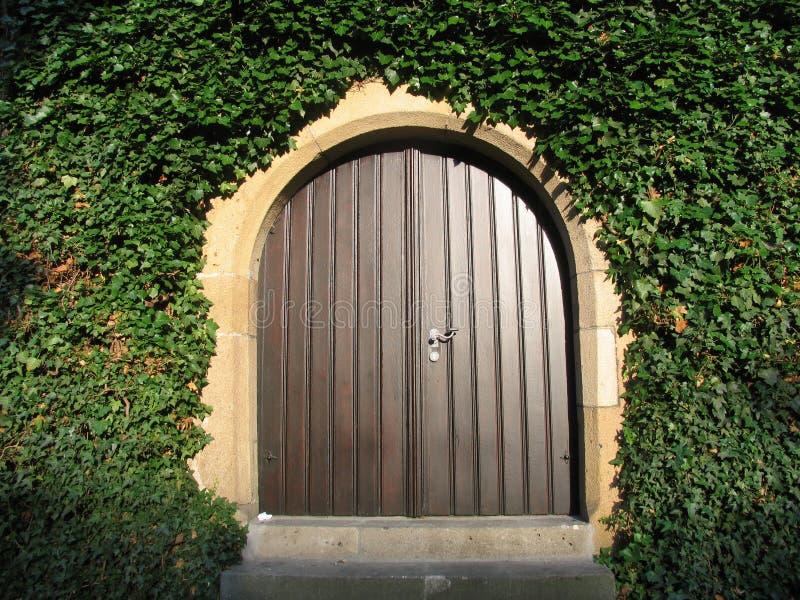 Zonnige houten ingang royalty-vrije stock afbeeldingen