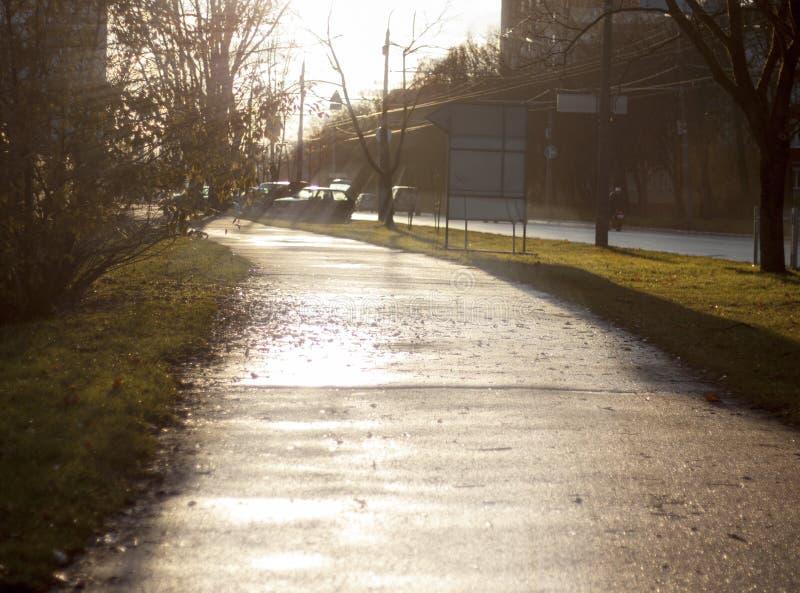 Zonnige ochtend en jogging, die op u wacht stock foto's