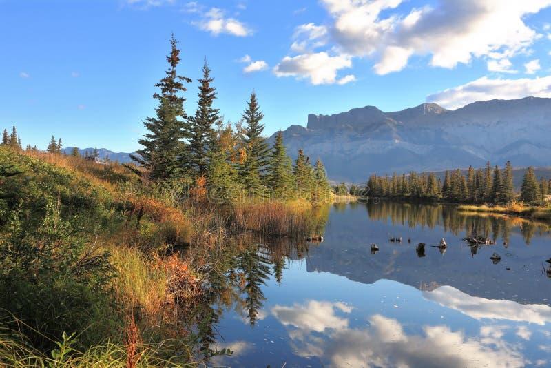 Zonnige ochtend in het Nationale Park van de Jaspis, Canada stock foto's