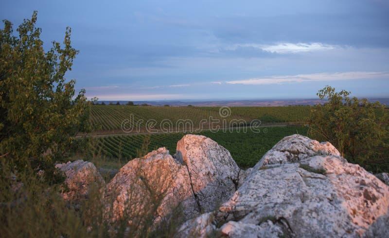 Zonnige roze ochtend op Kocici-rots stock foto