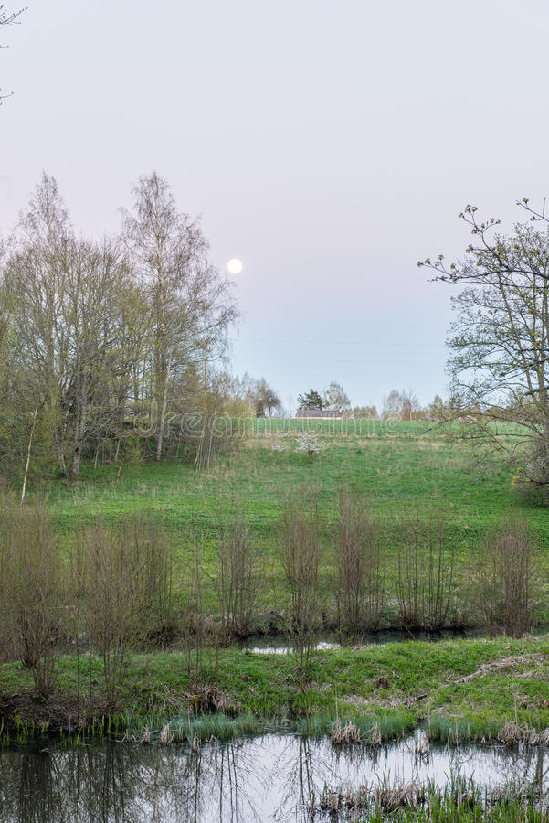Download Zonnige Toeristensleep In Het Hout In De Lente Stock Foto - Afbeelding bestaande uit avontuur, gebladerte: 54077654