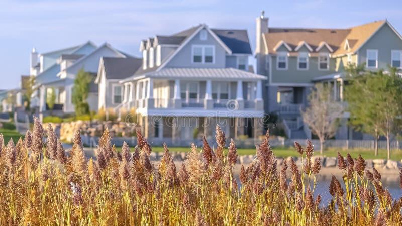 Zonovergoten huizen voorbij grassen in Oquirrh-Meer Utah royalty-vrije stock afbeelding