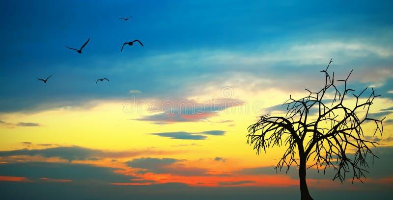 Zonsondergang stock illustratie