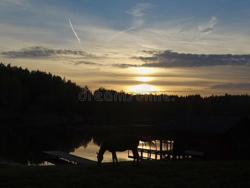 Zonsondergang in aard stock foto's