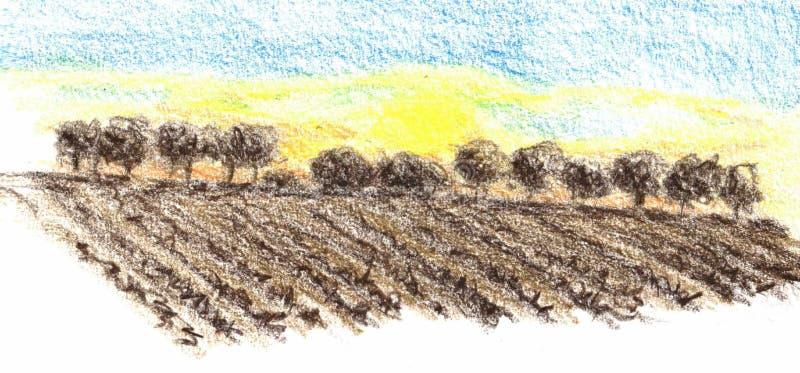 Zonsondergang achter bomen op de horizon met geploegde gebieden vooraan vector illustratie