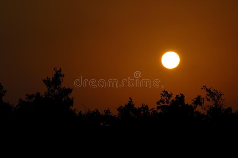 Zonsondergang in Afrika stock afbeeldingen