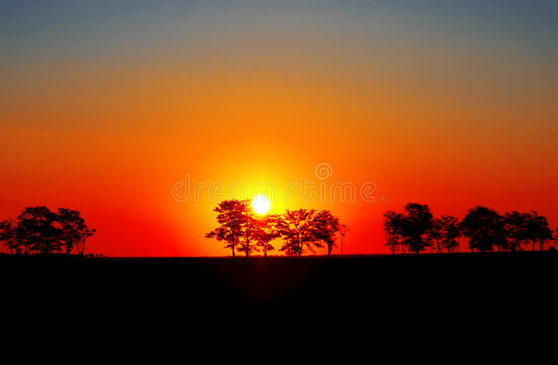 Zonsondergang in Afrika. royalty-vrije stock foto